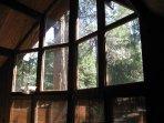 Window, Lamp, Lighting, Dining Room, Indoors