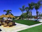 Huge back yard pool/spa