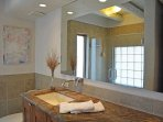 Upscale contemmporary bathroom