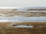 Mud flats at Snettisham RSPB .. we are a 5 minute walk away .. perfect accommodation for twitchers