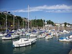 Saundersfoot harbour is a hive of activity