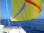 Relaxing down-wind sailing on a stable catamaran!