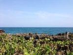 Ocean Front - Sea Spray Guest House