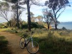 Walking and bike track behind the Coronet Bay  foreshore with beautiful water views