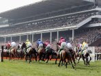 Perfect accommodation for race meets - Cheltenham Gold Cup!.