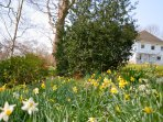 A stunning Spring garden