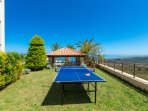 Ping pong table in our garden