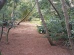 Pour flâner et se détendre dans le jardin méditerranéen
