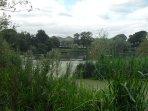Friggate Pond
