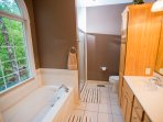 Master bathroom and jacuzzi tub