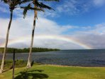 Rainbow at Wavecrest Resort