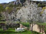 En pleine nature, indépendant avec jardin clôturé