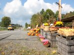 Roadside stands for fresh local produce abound from early spring to late fall.
