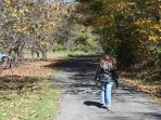 Hike, bike or ride your horse on the New River Trail State Park, nearby.