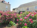 magnifiques parterres fleuris - les logis de la rimbertière - Thuré 86 - proche Futuroscope