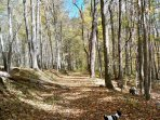 Wonderful hiking trails right here on the property of CB Ranch.