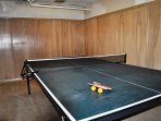 Party Room Ping Pong