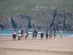 Beach rides available at local riding stables