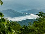 Watch rivers of clouds snaking between the mountains in the morning.