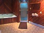 Master bathroom large tub and shower