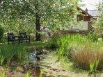 The wild life pond