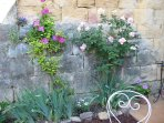 Rampart wall and courtyard flowers
