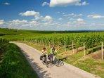 Radfahren in der Pfalz Fahrradabstellplätze in Garage verfügbar