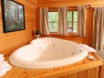 Heart Shaped Jacuzzi Tub in Downstairs Bedroom