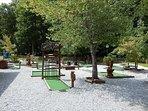 Carpet Golf