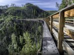 'The Myra Canyon Tunnel and Trestle bike ride is a blast' - Pat