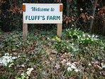 Fluff's Farm!