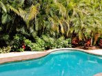 Tropically Landscaped Pool