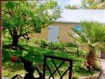 terrasse, vue sur le jardin tropical