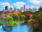 This is NY Central Park in October, one of the best months to visit New York City