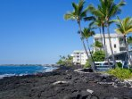Just steps away from the downtown village of Kailua-Kona, yet feels like a private waterfront escape
