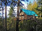 Only one cabin in the forest