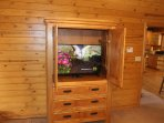 All bedrooms have a 43' HDTV with DISH