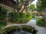 fountain to pool off kitchen