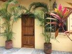Front door and patio