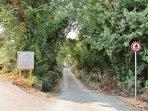 Walking paths in PORAT