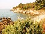 Untouched little bay 'Sveti Martin'