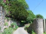 Enjoy a walk down Shady Lane.