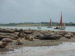 Seal watching at Blakeney Point