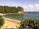 Beautiful Beach Home, Ocean Views, Walk to Beach & More!