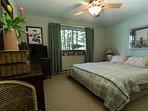 Master bedroom has king bed, great lake view, flat screen TV, dresser, closet