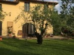 charming ancient country house inside beautiful vineyards