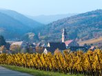 The wonderful setting of Riquewihr, our village on the Alsace wine route.