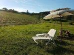 Relax con vista vigneto e colline del Chianti