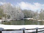Heath Farm pond one winter.