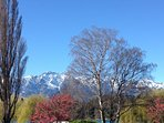 colourful Queenstown in the Spring